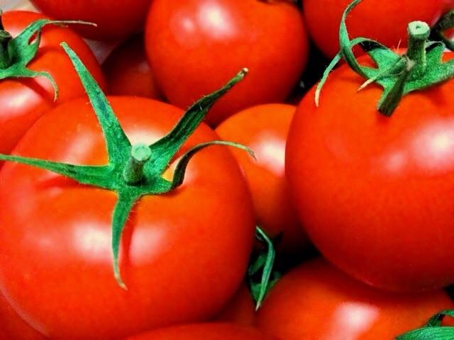 tomato_AB-pedia